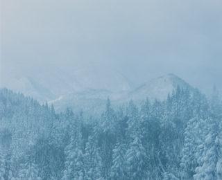 雪に浮かぶ